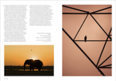 LPM-Psycho-Sunrise-page7-8