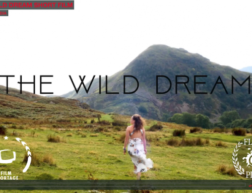 THE WILD DREAM SHORT FILM
