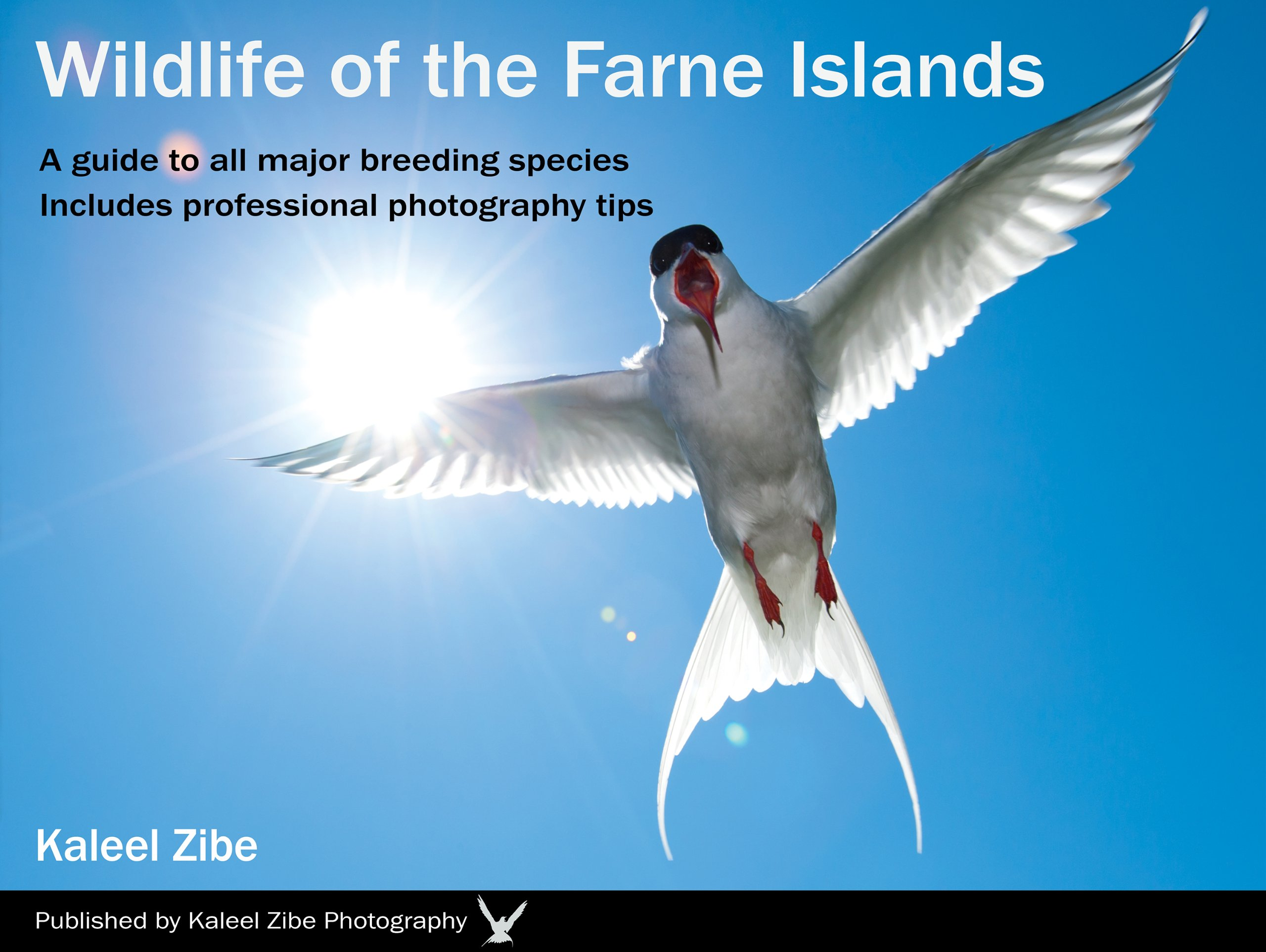 Wildlife of the Farne Islands Edition 1 cover